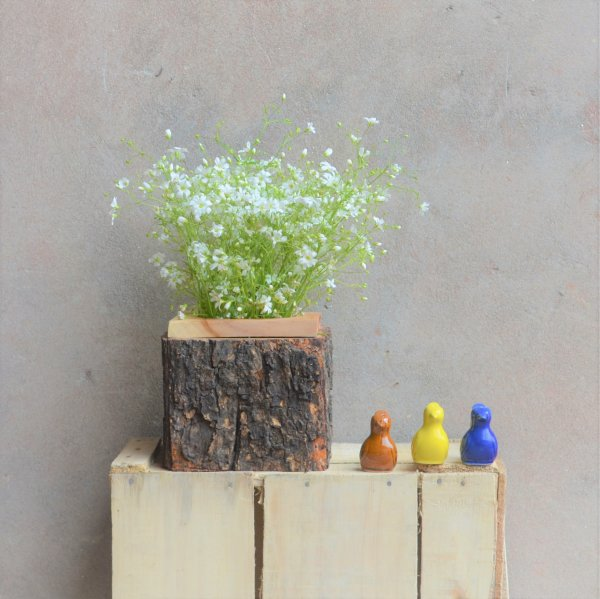 Coco-Loco Tree Bark Planter