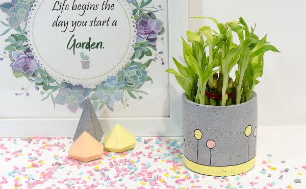 Concrete Circlet Planter