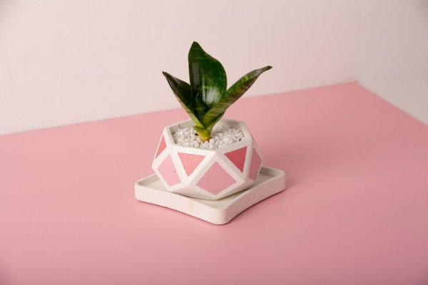 Concrete Hexamont Planter