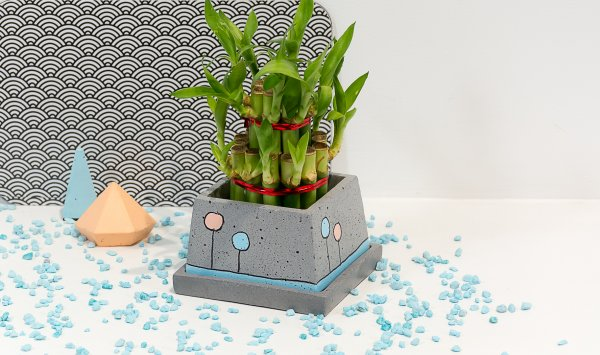 Concrete Stylish Planter