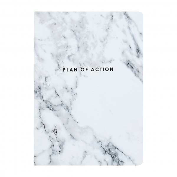 Plan Of Action Diary