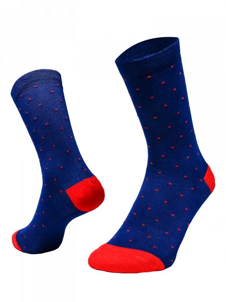 Regal Edition Socks