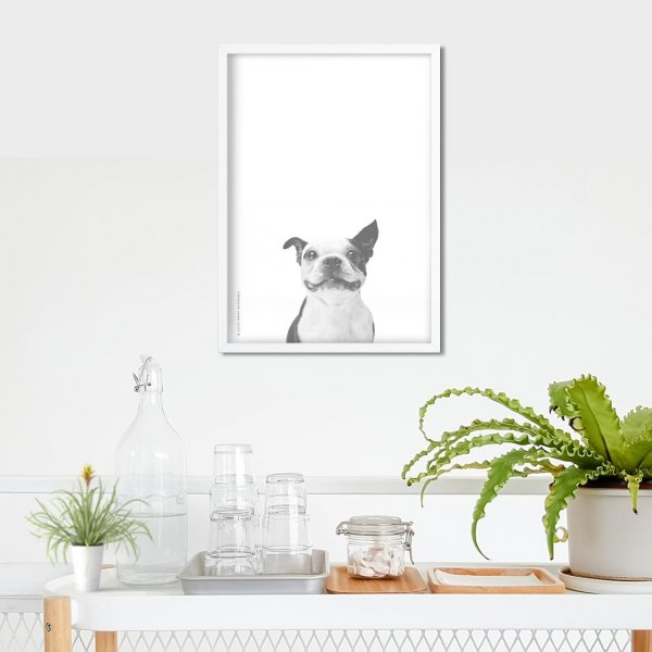 Doggo - Wall Art